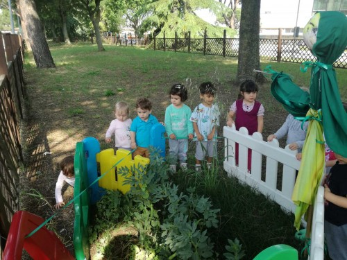 nido-teddy-giardino